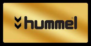 2-Hummel-300x153
